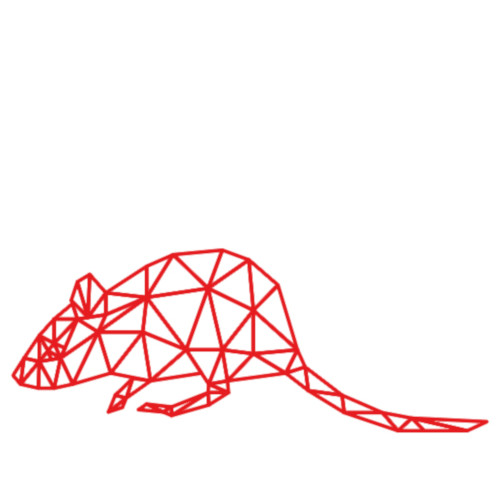 Mouse Wireframe